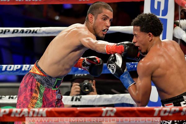 Antonio Lozada, Jr. defeats Felix Verdejo by 10th Round TKO