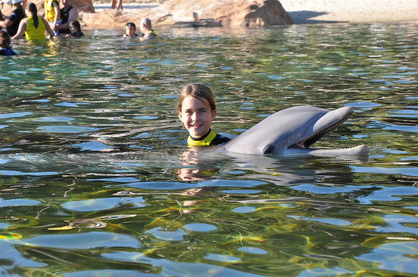 2011 Discovery Cove