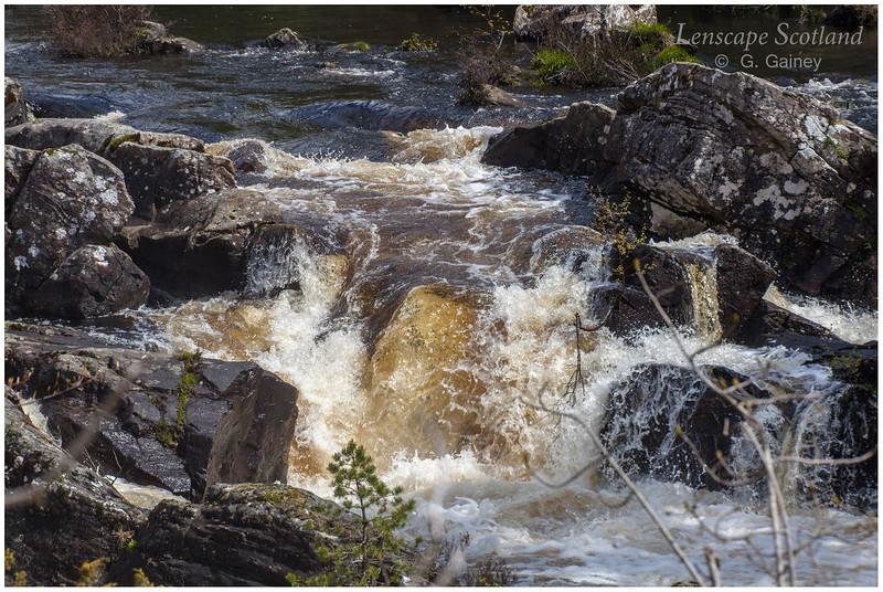 Rogie Falls, Contin, near Strathpeffer (2)