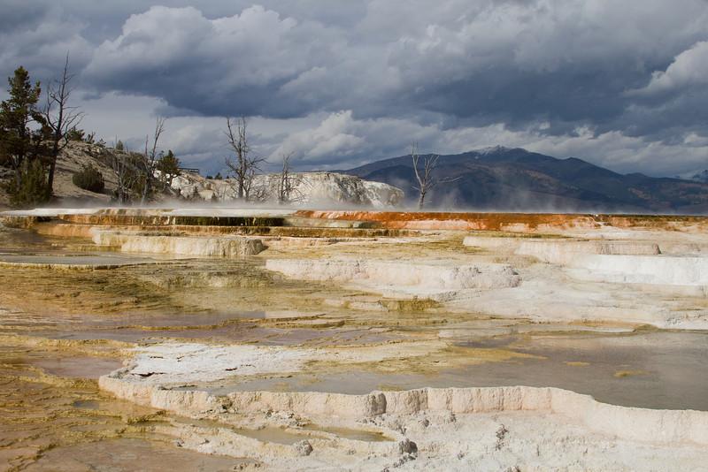 Yellowstone5 733.jpg