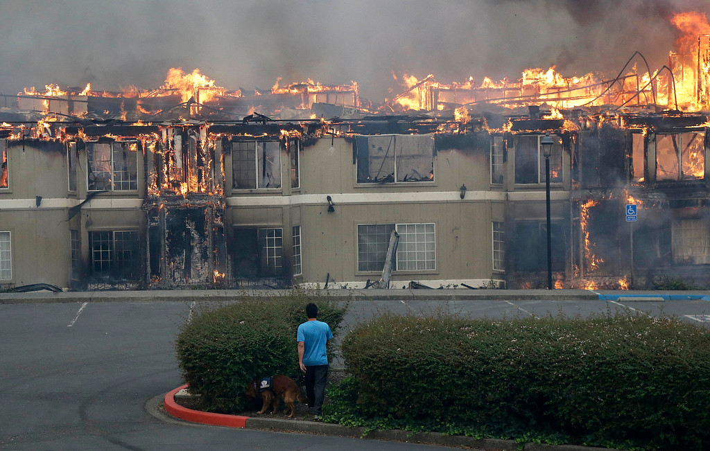 . Rudy Habibe, from Puerto Rico, and his service dog Maximus walk toward a burning building at the Hilton Sonoma Wine Country hotel, where he was a guest, in Santa Rosa, Calif., Monday, Oct. 9, 2017. Wildfires whipped by powerful winds swept through Northern California sending residents on a headlong flight to safety through smoke and flames as homes burned. (AP Photo/Jeff Chiu)
