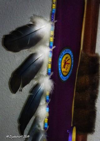 Choctaw Pow Wow 2019