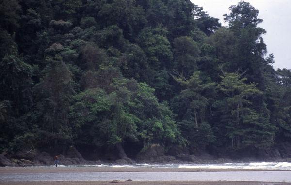 Costa Rica - Decembr 1999