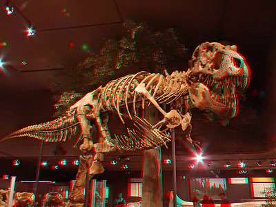 Museum of the Rockies 3D Dinosaurs