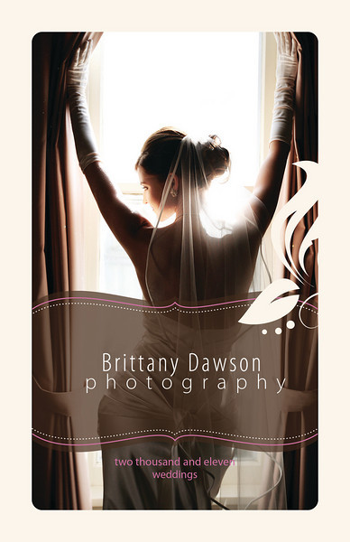 Brittany Dawson 2011 Pricing Guide