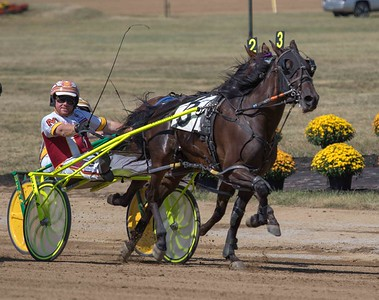 Race 7 DCF 9/19/19 OBC2YCP