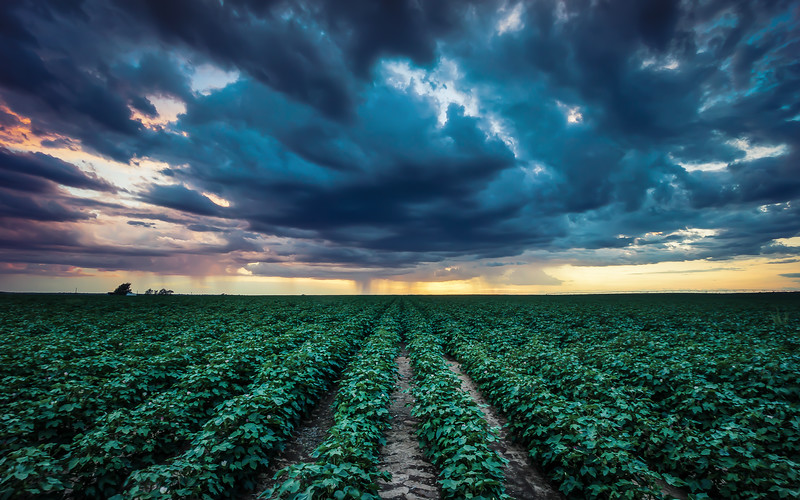 colorful-stormy-sunset-over-field-near-amarillo-texas.jpg