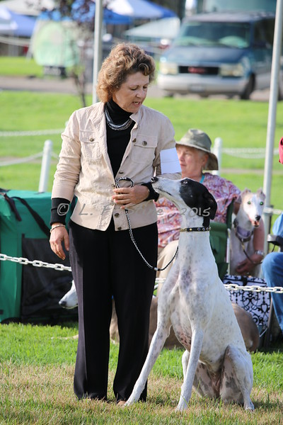GCA Western Specialty Obedience & Rally
