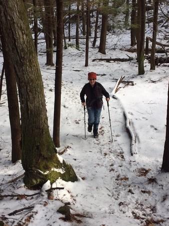 January 21 Saturday Hike