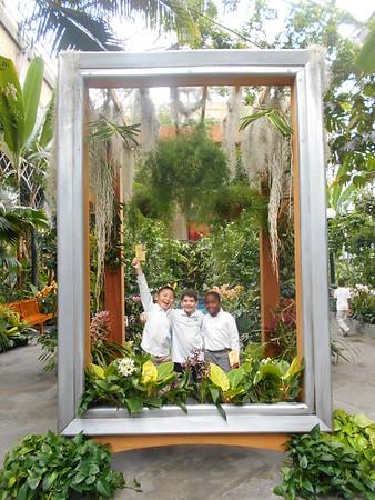 2nd Grade Botanists Explore the Rainforest