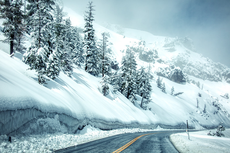 Summer Snow 009