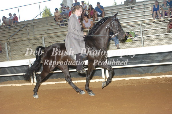 CLASS 3  PLANTATION PLEASURE LITE SHOD SPECIALTY OPEN