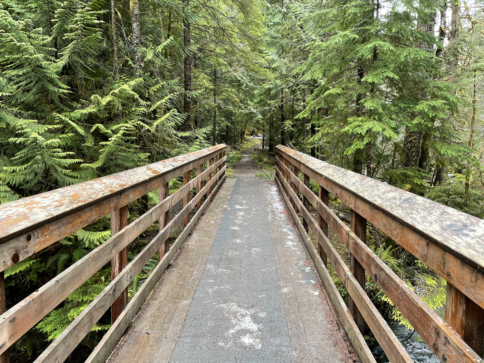 One of the numerous bridges crossing back and forth over the Quilcene River