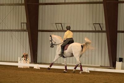 Horse 621
