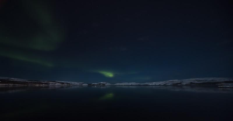 gogo northern light dec 2019 (6 of 35).jpg