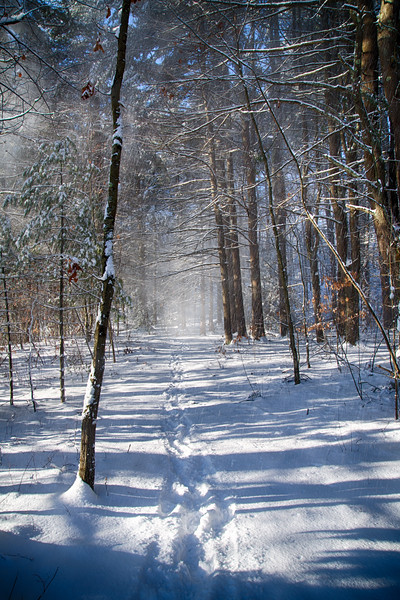 Winter at Ashland State Park