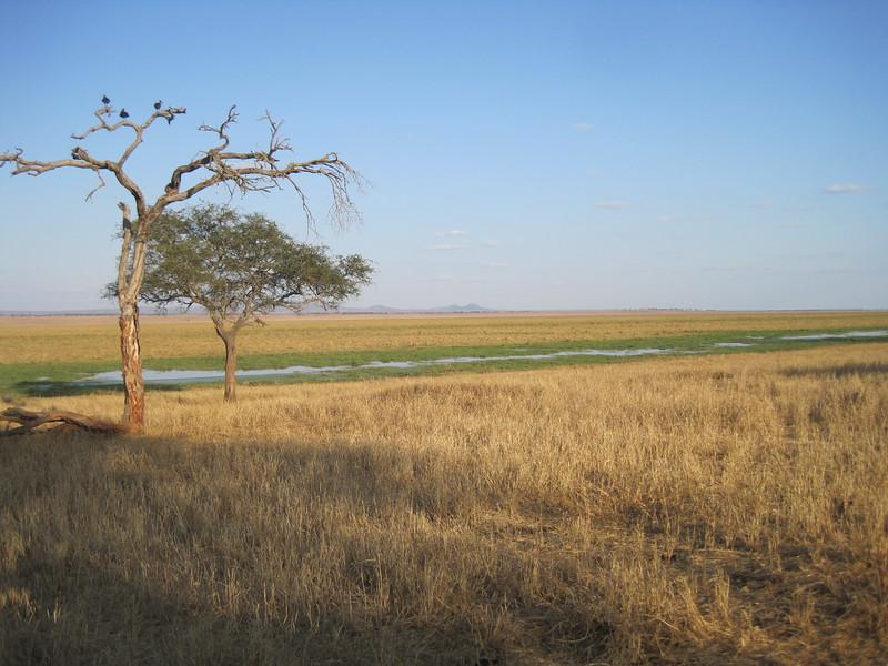 Tanzania14-3226.jpg