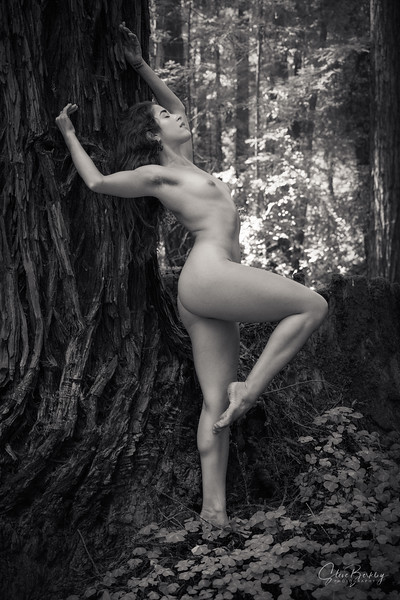 Eva in the Forest (B&W)