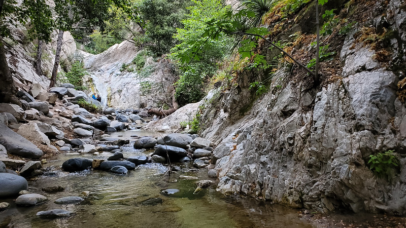 20190621028-Switzer Falls, Bear Canyon.jpg