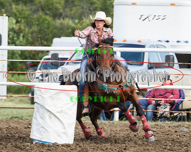 Jenner Rodeo 2016