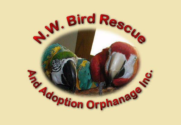 OLD Northwest Bird Rescues logos