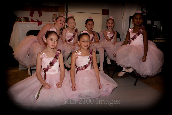 2009 NYAB Holiday Show