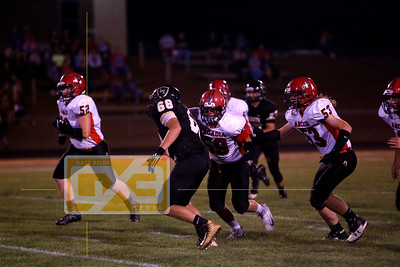 Arcadia @ Luther FB17
