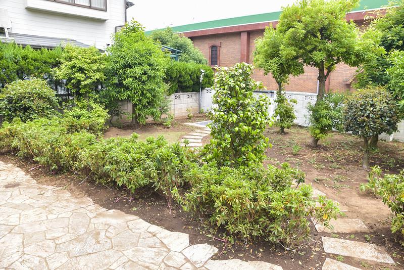 icjc garden-5466.jpg