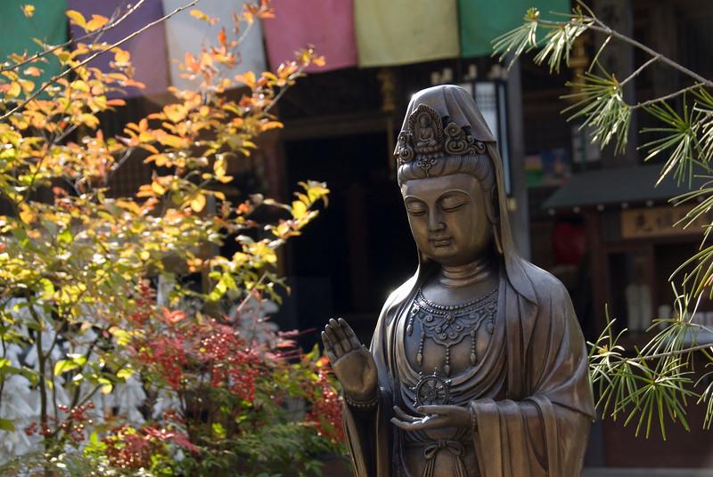 Isolated shot of Buddha statue in Daisho-in Temple - Miyajima, Japan