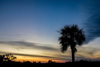 IOP Sunset 3/12