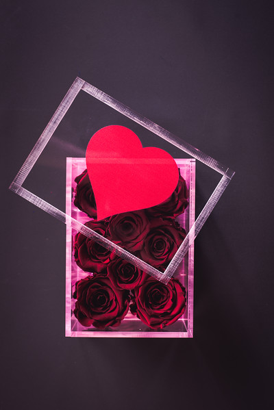 Rose Inspired Valentines Collection-5600.jpg