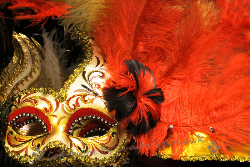 The Masque Ball ~ This dramatic feathered and glittery mask was photographed at Pier 1 Imports.