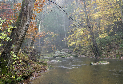 Gunpowder River Fall Color