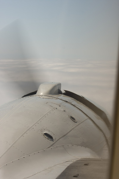 DC3-8519