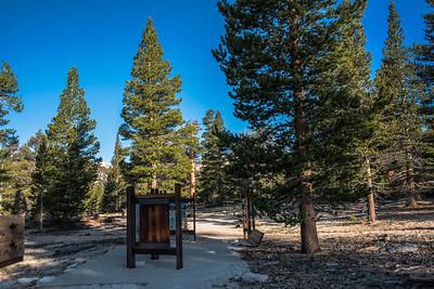 Cottonwood Pass Trail