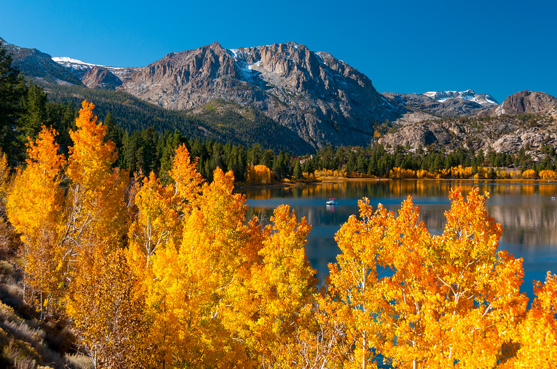 Fall color at June Lake