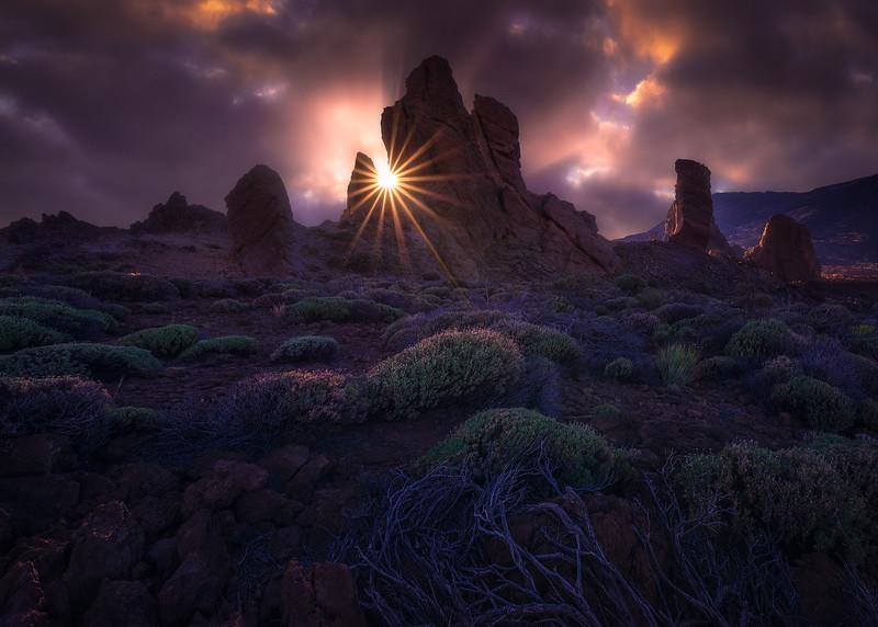 desert-sun 2.jpg