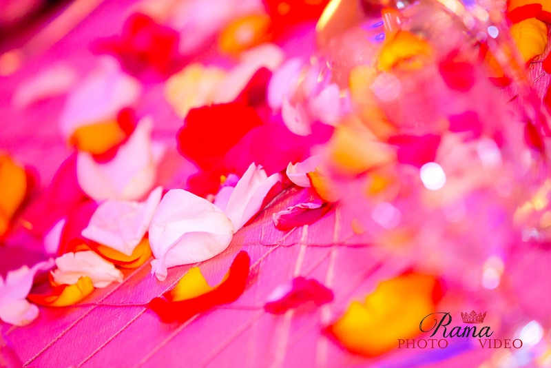 Rama Photo Video_6674.jpg