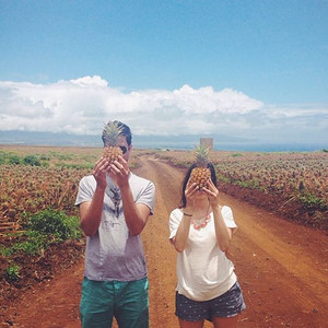Haliimaile Pineapple Tour - Maui Pineapple Tours