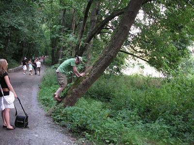 070818-21 See BuGa Weimar - Tatis Fotos
