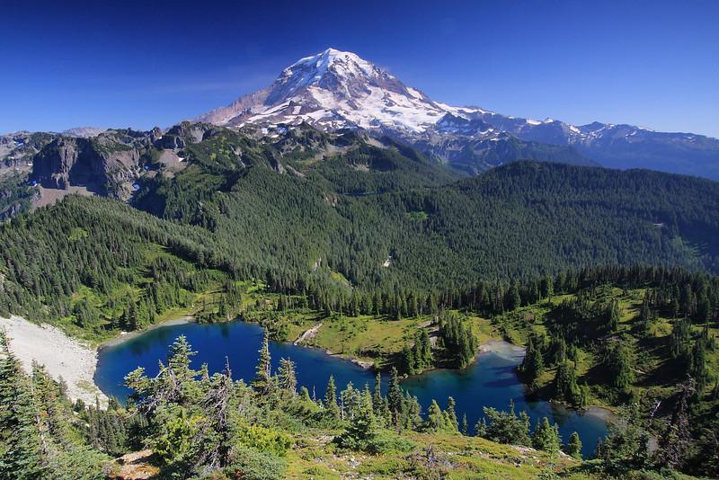 Tolmie Peak 11.JPG