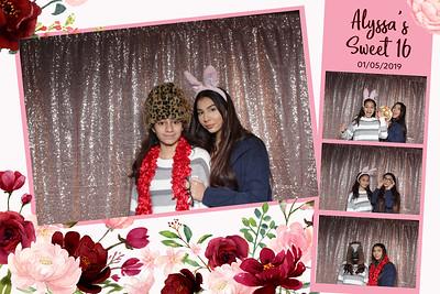 Alyssa's Sweet 16