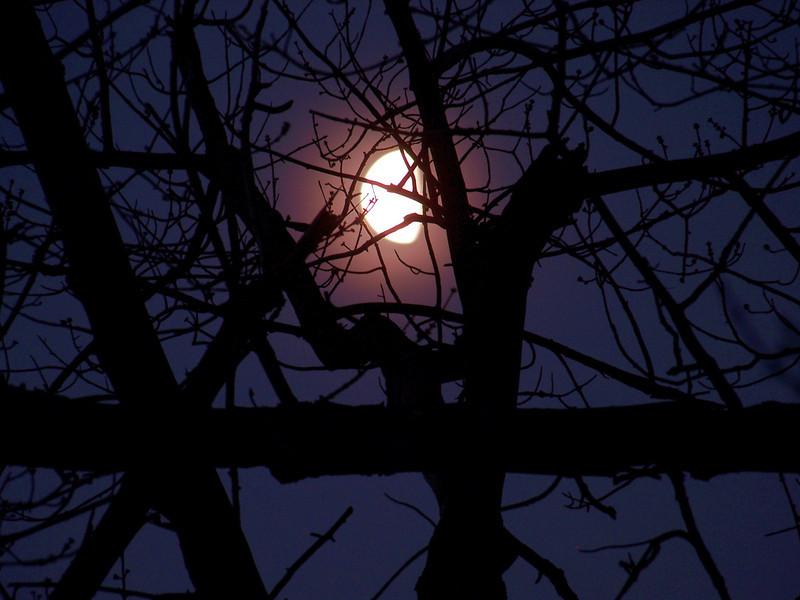 Moon Feb 4, 2010 - 1/4 sec at f-4.8.