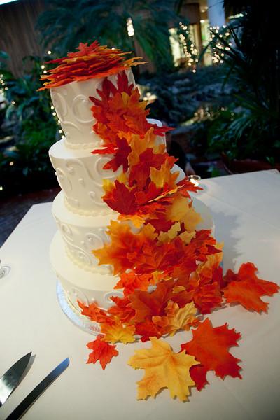 Emmalynne_Kaushik_Wedding-820.jpg