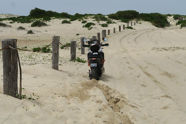 Sand Riding Masterclass  - NSW JAN 2017