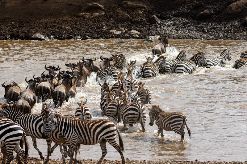 Kenya 2015-03930.jpg