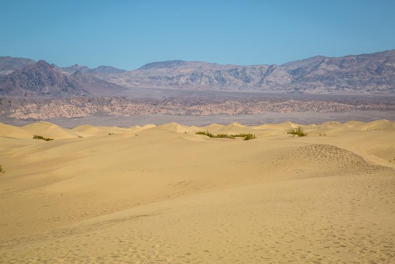 Death Valley-12.jpg