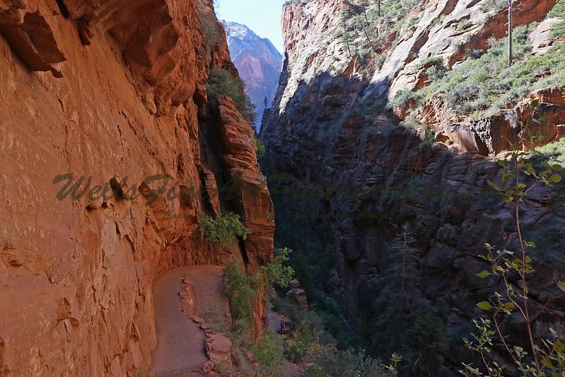 Path up Refrigerator Canyon.jpg