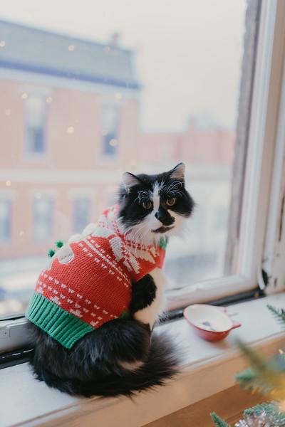 A Scrappy Christmas