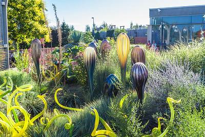 Chihuly Exhibition at Denver Botanical Gardens